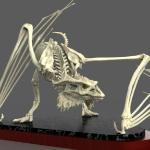 Dragon Skeleton sculpted in Zbrush and rendered in Keyshot.  Printed and produce as a model kit.