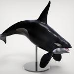 Orca sculpted in Zbrush and rendered in Keyshot.  Private commission printed and painted for collector.
